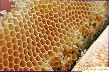 Harvesting, storage and use of honey combs