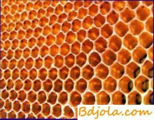 Reduction of labor costs for feeding bees
