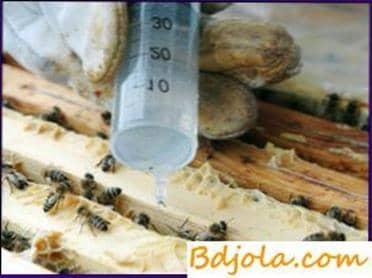 Treatment with oxalic acid