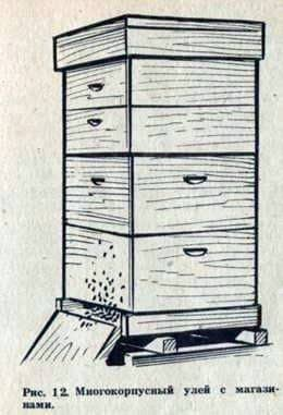 Hive multi storey