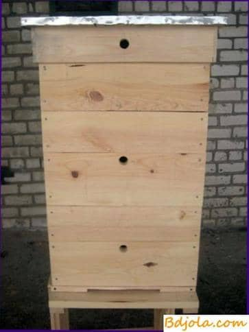 12 frame hive with a shop