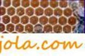 Thickened honeycombs