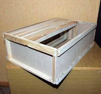 Device of the hive for the pavilion