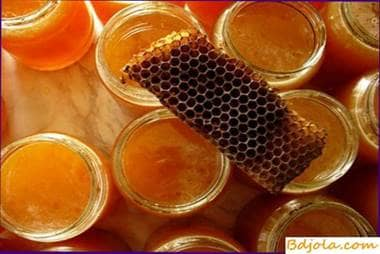 Honey for the treatment of skin diseases