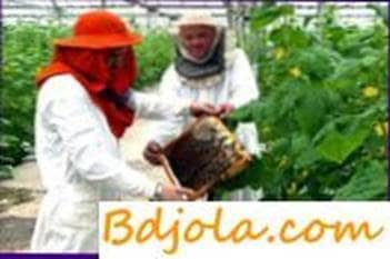 Preservation of bees in greenhouses