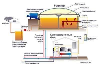 Simple biogas plant
