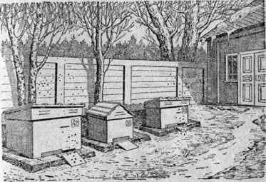 La primera primavera funciona en el apiario