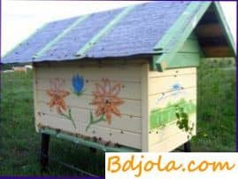 Interesantes experimentos con abejas