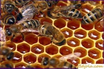 Dando a la miel una reacción ácida