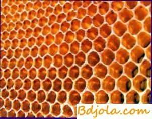 Reducción de los costos de mano de obra para alimentar a las abejas