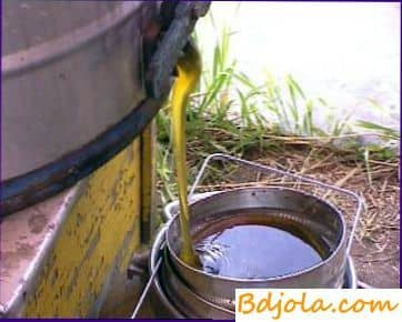 Extracción de nido de abeja en extractor de miel