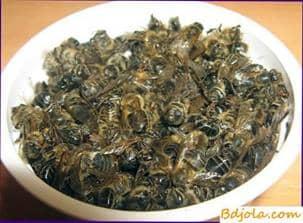 Tratamiento con sopa de abeja