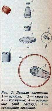La célula uterina de su propio diseño