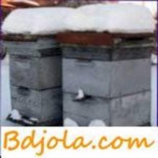 Invernada en colmenas multicasco