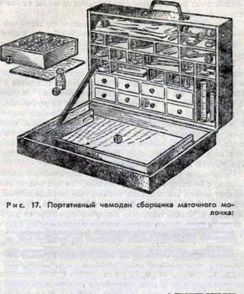 Производство маточного молочка