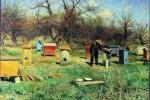Вынос пчел из теплиц после окончания вегетационного периода