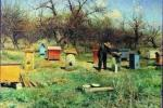 Remoción de abejas de invernaderos después del final de la temporada de crecimiento